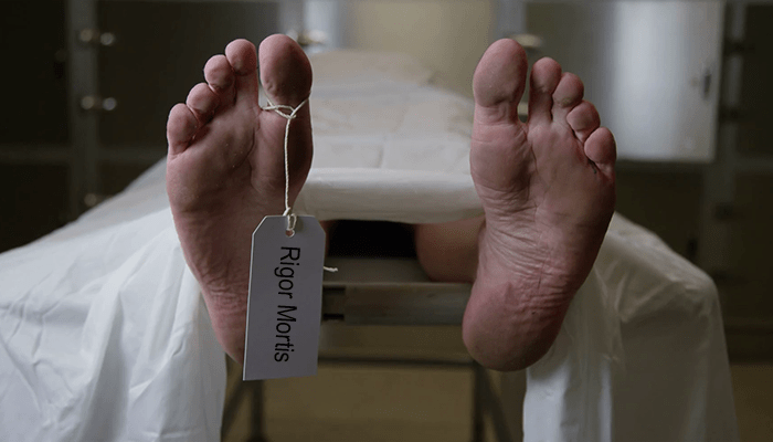 how rigor mortis works,rigor mortis facts,process of rigor mortis,death,reference,information,guide